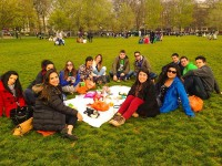 Picnic-in-the-Park