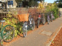embassy_summer_schools_cambridge_bicycles