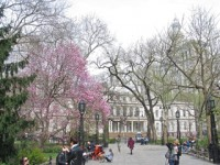 embassy_summer_schools_new_york_pace_park